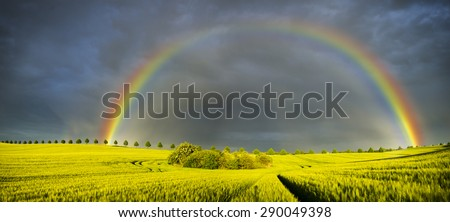 Spring colorful rainbow over the field after passing rainstorm  - stock photo