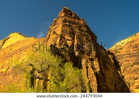 Spring comes to the mountains - stock photo