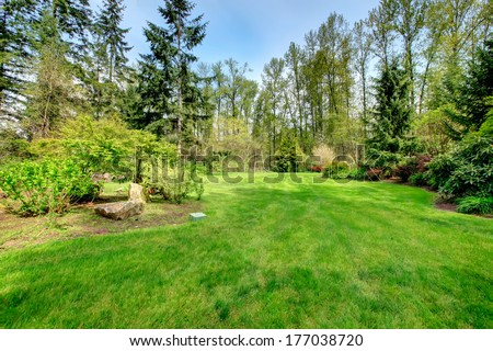 Spring countryside backyard with green lawn and bushes surrounded by green forest