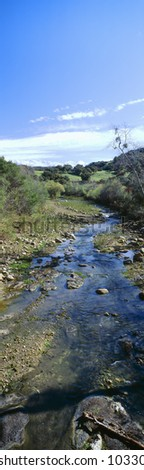 Spring creek in Upper Ojai, California - stock photo