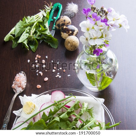 Spring diet salad with eggs, radish, cucumbers and dandelion leaves - stock photo