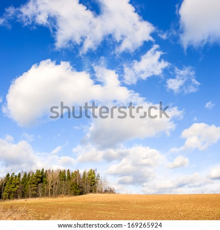 Spring field and sky - stock photo