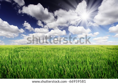 spring field and the beautiful blue sky - stock photo