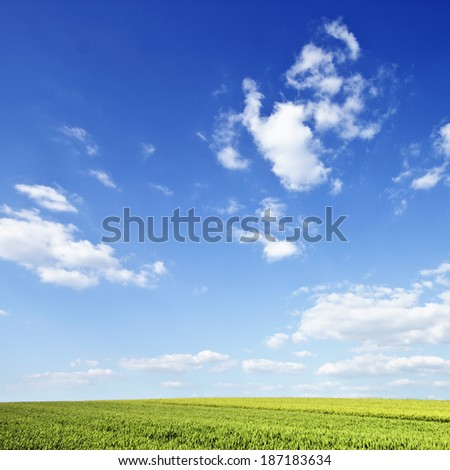 Spring field and wonderful sky - stock photo