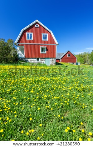 Spring field in front of Swedish house - stock photo