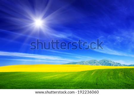 Spring field of fresh green grass and yellow flowers, rape. Blue sunny sky. Landscape background theme - stock photo