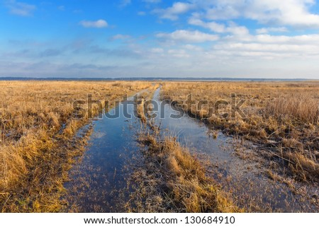 spring fields in a water - stock photo