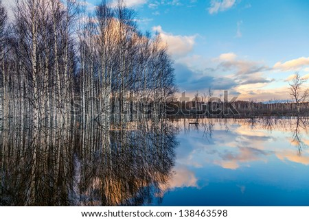 Spring flooding in Siberia - stock photo