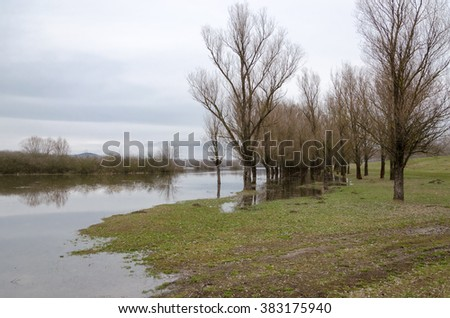 Spring flooding. Natural disaster. Flooding of the Tisza (Tisa) river in Tiszalok, Hungary. Flooded forest. - stock photo