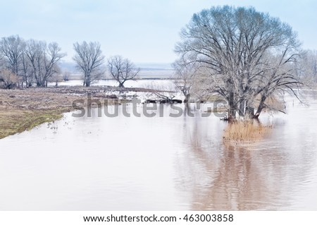 Spring flooding. Steppe river