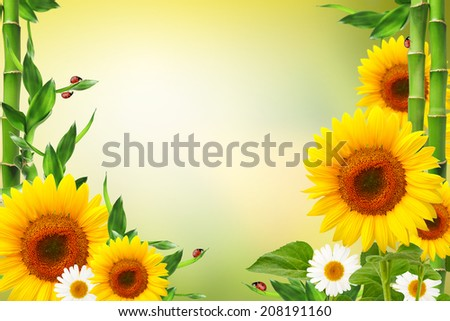 Spring floral background with ladybugs and copy space - stock photo