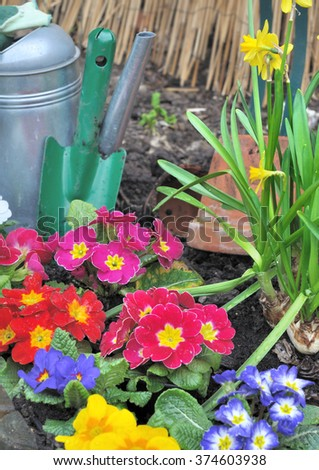 Spring flower bed with gardening accessories - stock photo