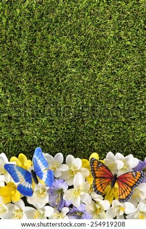Spring flower border, butterfly. - stock photo