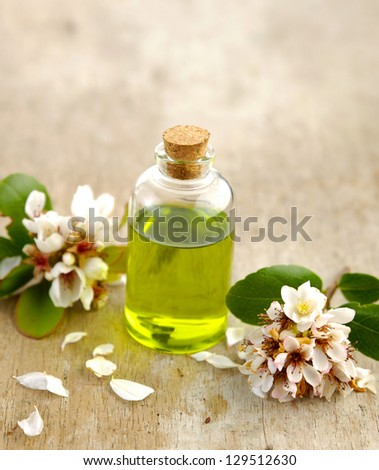 spring flower with massage oil on old wooden