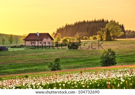 Spring flowered meadow with cottage - stock photo