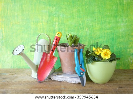 spring flowers and gardening tools, gardening concept,free copy space - stock photo