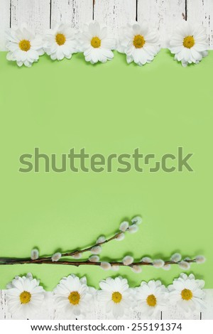 spring flowers and pussy willow twigs on wood background - stock photo