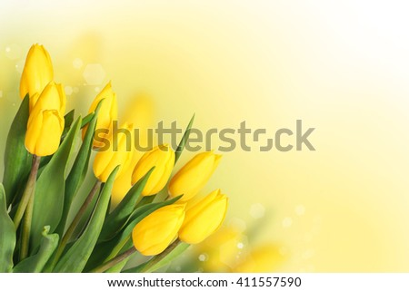 Spring Flowers. Beautiful Yellow Tulips Bouquet for Mother's day