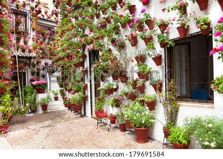 Spring Flowers Decoration of Old House  Patio, Cordoba, Spain, Europe - stock photo