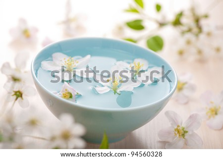 spring flowers for spa and aromatherapy