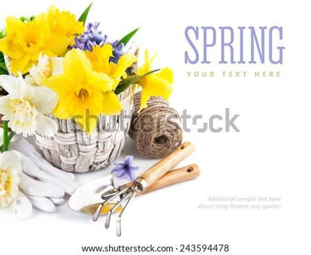 Spring flowers in basket with garden tools. Isolated on white background - stock photo