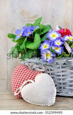 spring flowers in basket with  hearts cushion - stock photo