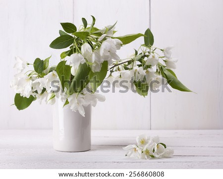 Spring flowers of apple. Apple tree branch in a vase - stock photo