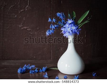 spring flowers on dark wooden background