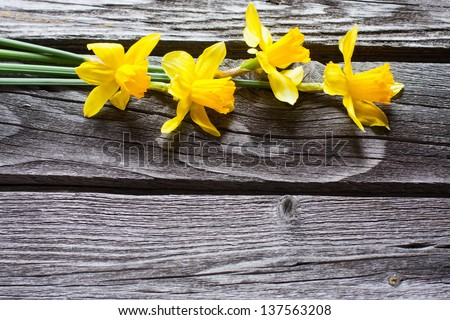 spring flowers on wooden background - stock photo