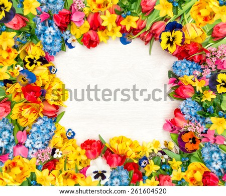 Spring flowers on wooden background. Tulips, narcissus, hyacinth and pansy blossoms - stock photo