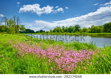 Spring flowers river landscape blue sky clouds countryside  - stock photo