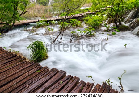 Spring forest creek in Plitvice National park -Croatia - stock photo