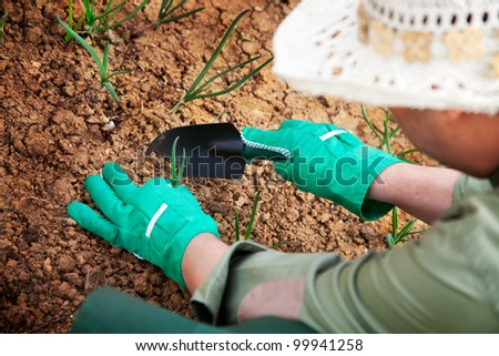Spring garden concept. Male is doing garden work - stock photo