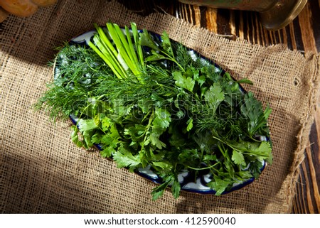 Spring Garden Fresh Green Herbs DIsh - stock photo
