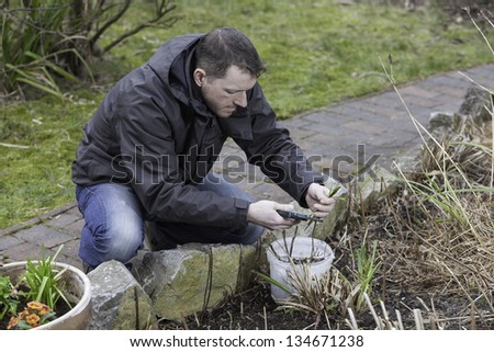 spring garden work.    young man doing garden work. - stock photo