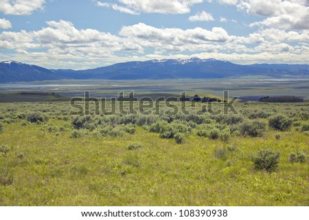 Spring grasslands and flowers in Centennial Valley near Lakeview, Montana - stock photo