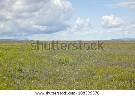 Spring grasslands and mountains in Centennial Valley near Lakeview, Montana - stock photo