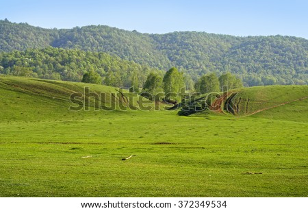 Spring green empty meadow with a forest on a hill as a background - stock photo