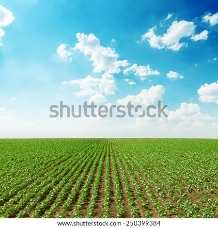 spring green field and blue sky with white clouds - stock photo