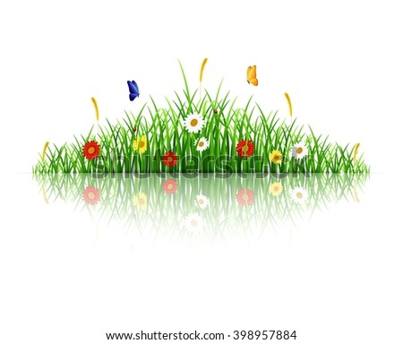 Spring green grass with flowers and butterflies on white background - stock photo