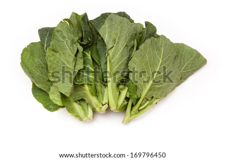 Spring Greens (Brassica oleracea ) isolated on a white studio background.