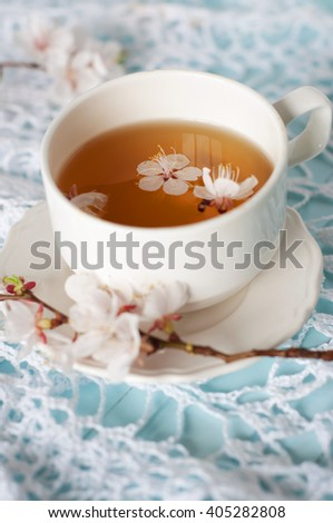 Spring herbal tea with cherry blossom flowers - stock photo