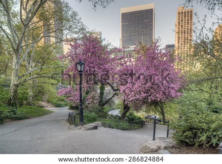Spring in Central Park, New York City - stock photo