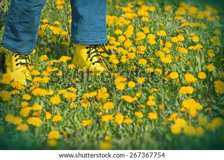 Spring in meadow - Spring walks on meadow full of flowers - stock photo