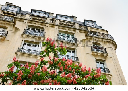 Spring in Paris. Blossoming Chestnut tree and typical Parisian building.  - stock photo