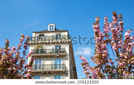 Spring in Paris. Typical Parisian buildings (Marais quarter) and blossoming pink trees.  - stock photo