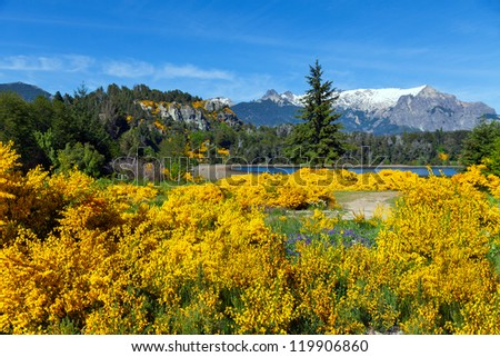 Spring in Patagonia, Argentina - stock photo