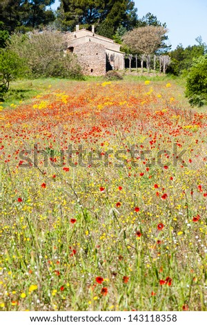 Spring in Provence. Red poppies and yellow rape field. Old farm house at background. Selective focus. - stock photo