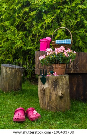 Spring in the garden: the tools and utensils you need for gardening - stock photo