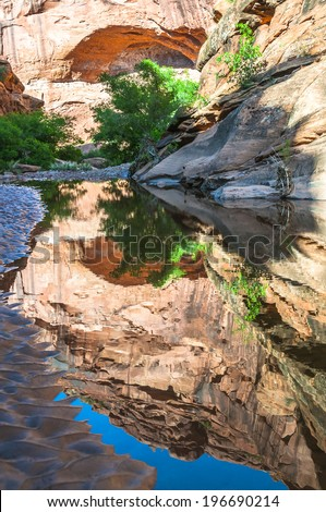 Spring in the Hunter Canyon trail near Moab Utah